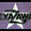 よく見かける矢沢永吉さんのタオル。コンサートで投げてもいいの?